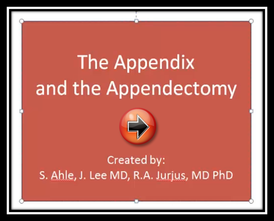 The Appendix and the Appendectomy