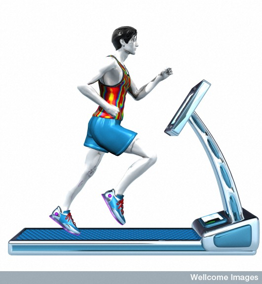 Software & Images Resources - Man running on treadmill