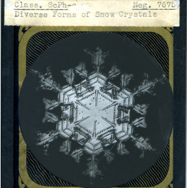 snowflake from Rebecca Crown Library, Dominican University