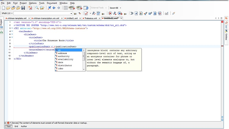 Within the TEI editor, a prompt appears when errors are made to flag mistakes.