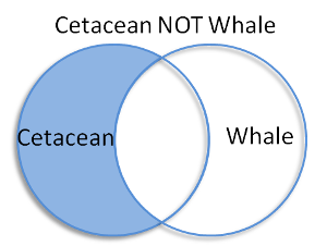 Venn diagram with Cetacean in left circle and Whale in right circle.