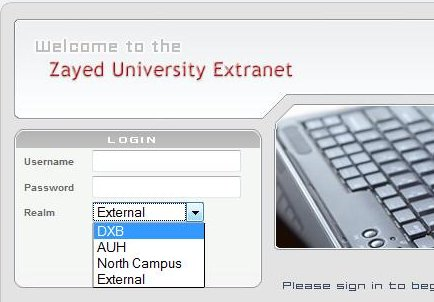 Figure 1, Extranet log-in