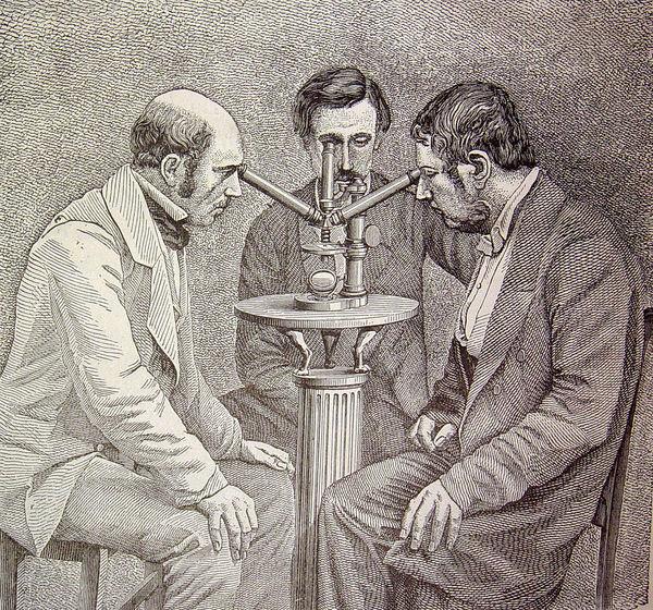 Microscopio de tres cuerpos para las observaciones simultáneas