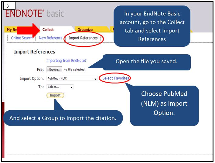import saved file in endnote basic collect tab