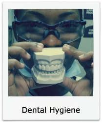 Afican American dental professional holding model of teeth