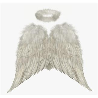 Image of angel wings and halo
