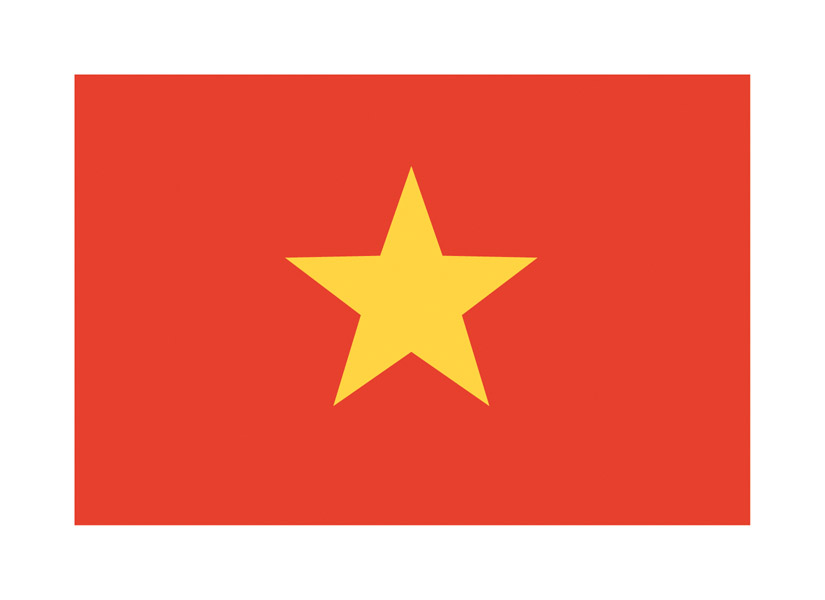 Vietnamese national flag