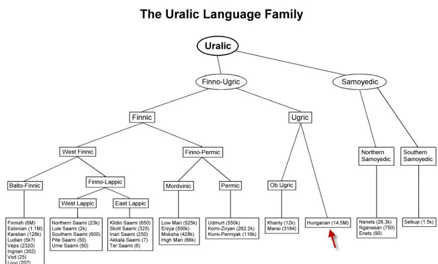 Map of Uralic language family tree