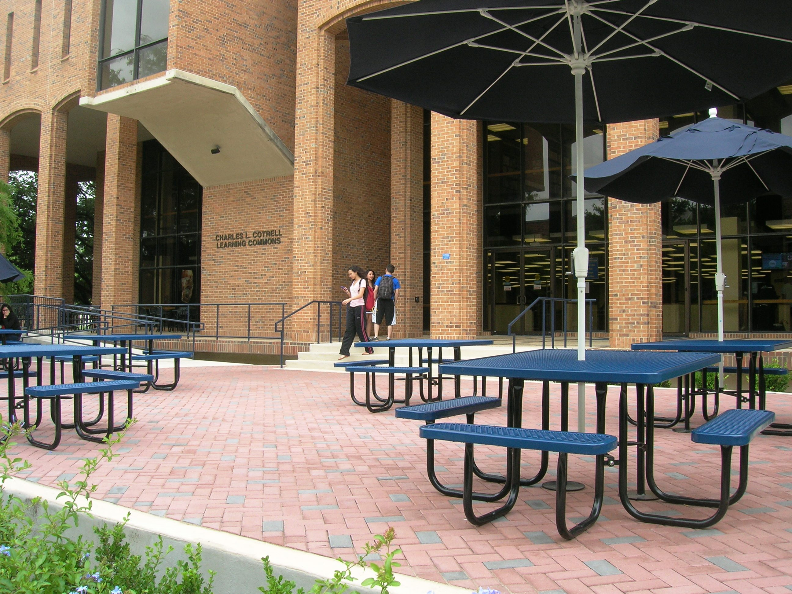 south entrance of library