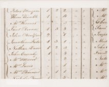 old census records