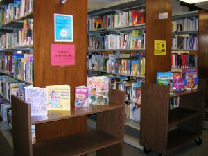 photograph of the juvenile literature collection at the Blume Library