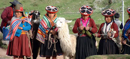 A picture of Quechua women around a lama