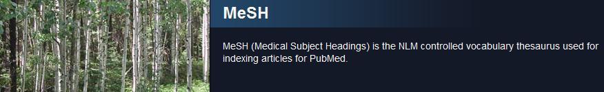 MeSH Logo image