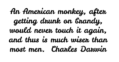 Darwin Quote from BrainyQuote.com