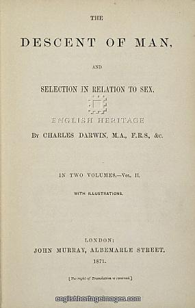 Copy of The Descent of Man, Vol. II, 1871