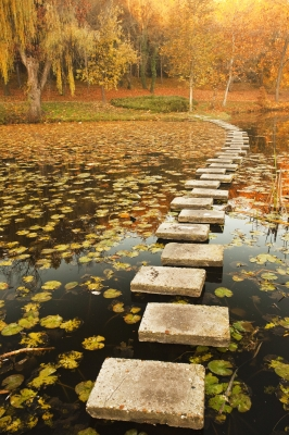 Path through lake