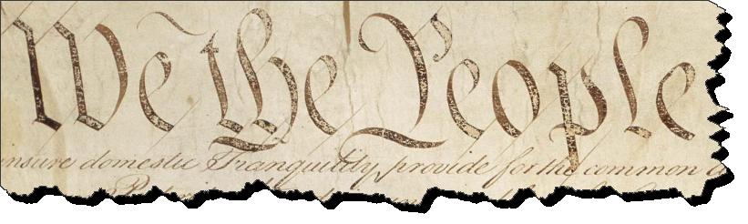 constitution detail