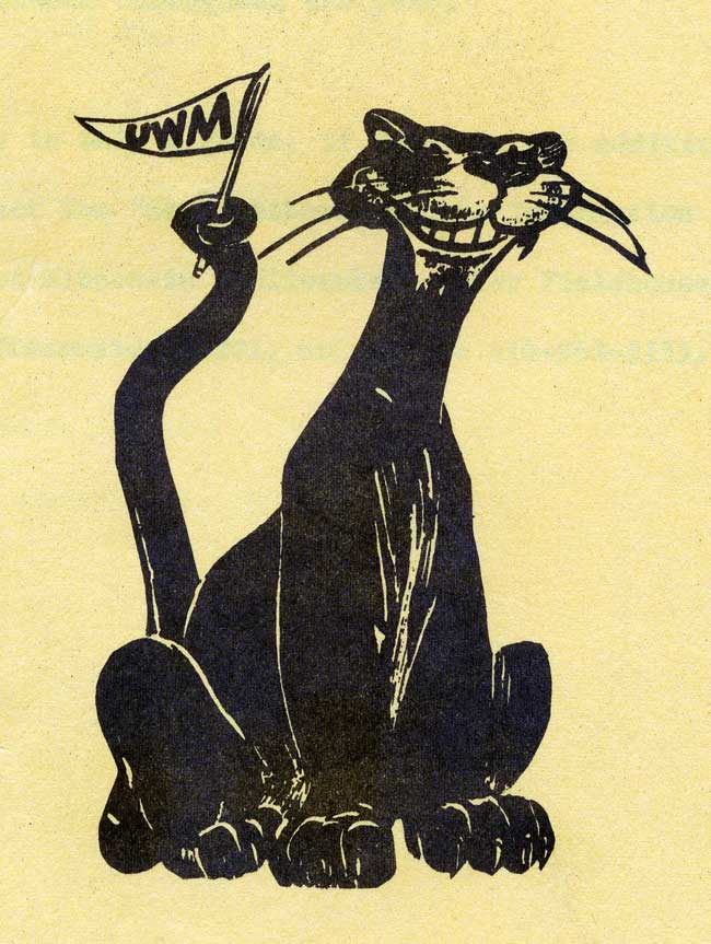 pantherflag1973.jpg