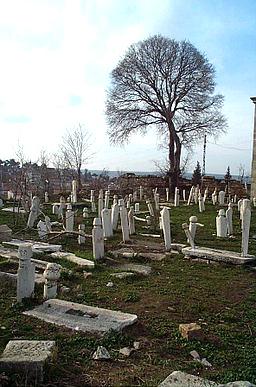 Edirne Graveyard 7345 Nevit