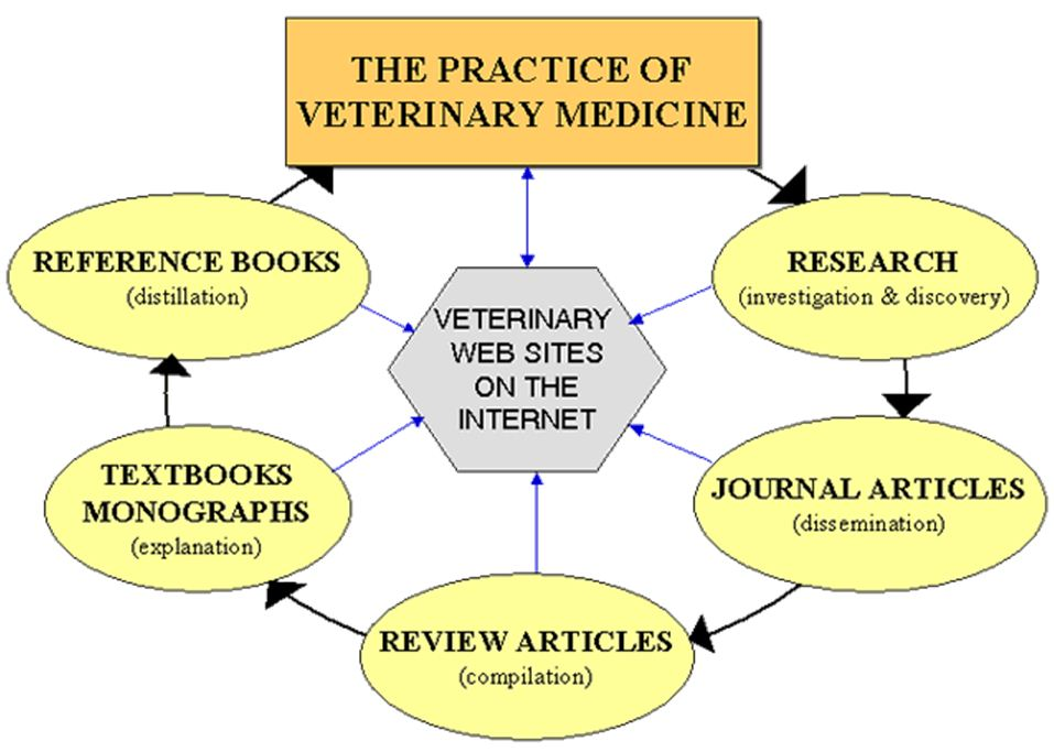 Graphic of the Basics of Vet Literature