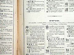 Image of a page in a Chinese book