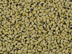 picture of black-eyed peas