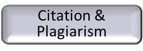 Citation & Plagiarism button