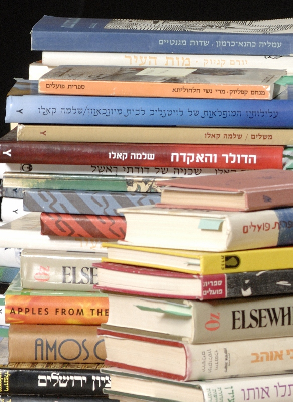 Book Spines in Hebrew and English