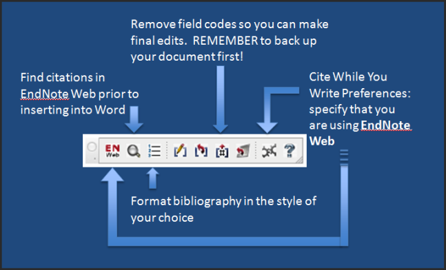 EndNote Web toolbar in Word for Mac