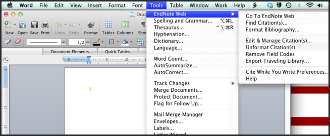 View EndNote Web Commands in Word for Mac