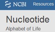 nucleotide database