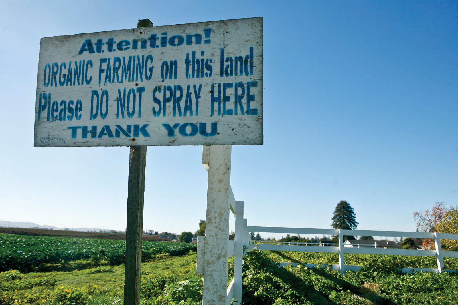 farm sign: Attention! Organic farming on this land. Please do not spray here. Thank You.