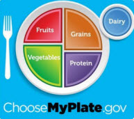 Picture of plate with balanced food choices