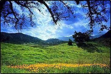 Santa Monica Mountains Nature Conservancy