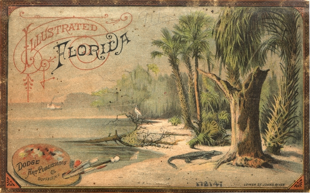 Illustrated Florida illustration