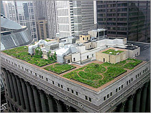 Green Roof in Chicago EPA Photo