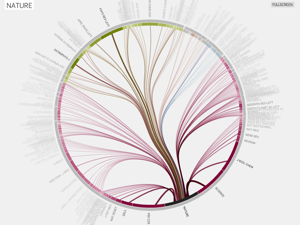 visualization of citation flow