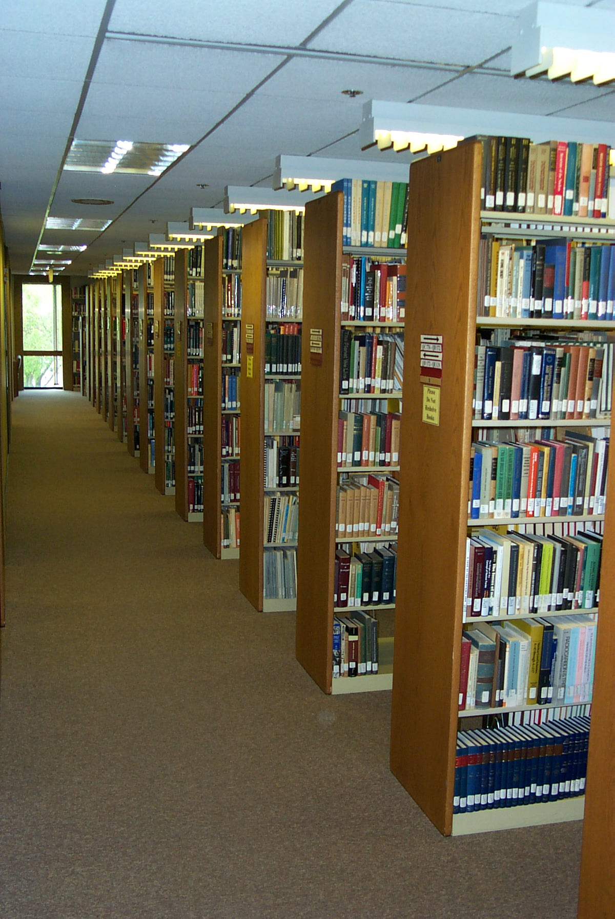 Library Books on the Shelf