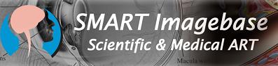 SMART Imagebase Logo