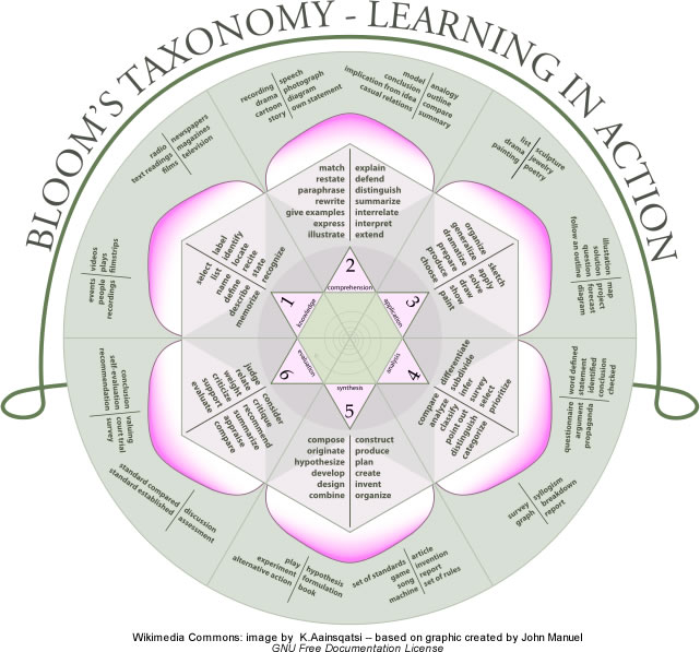 Image illustrating Bloom's Taxonomy in the rose pattern.