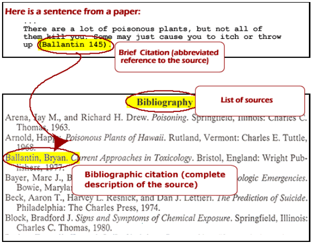 IRIS In-text citation and bibliography