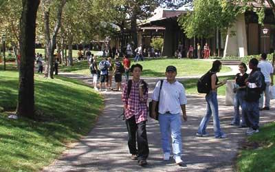 Students walking near library quad
