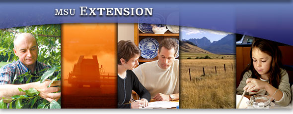 extension banner
