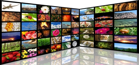 Multimedia Screens