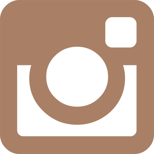 Follow the SMS on Instagram