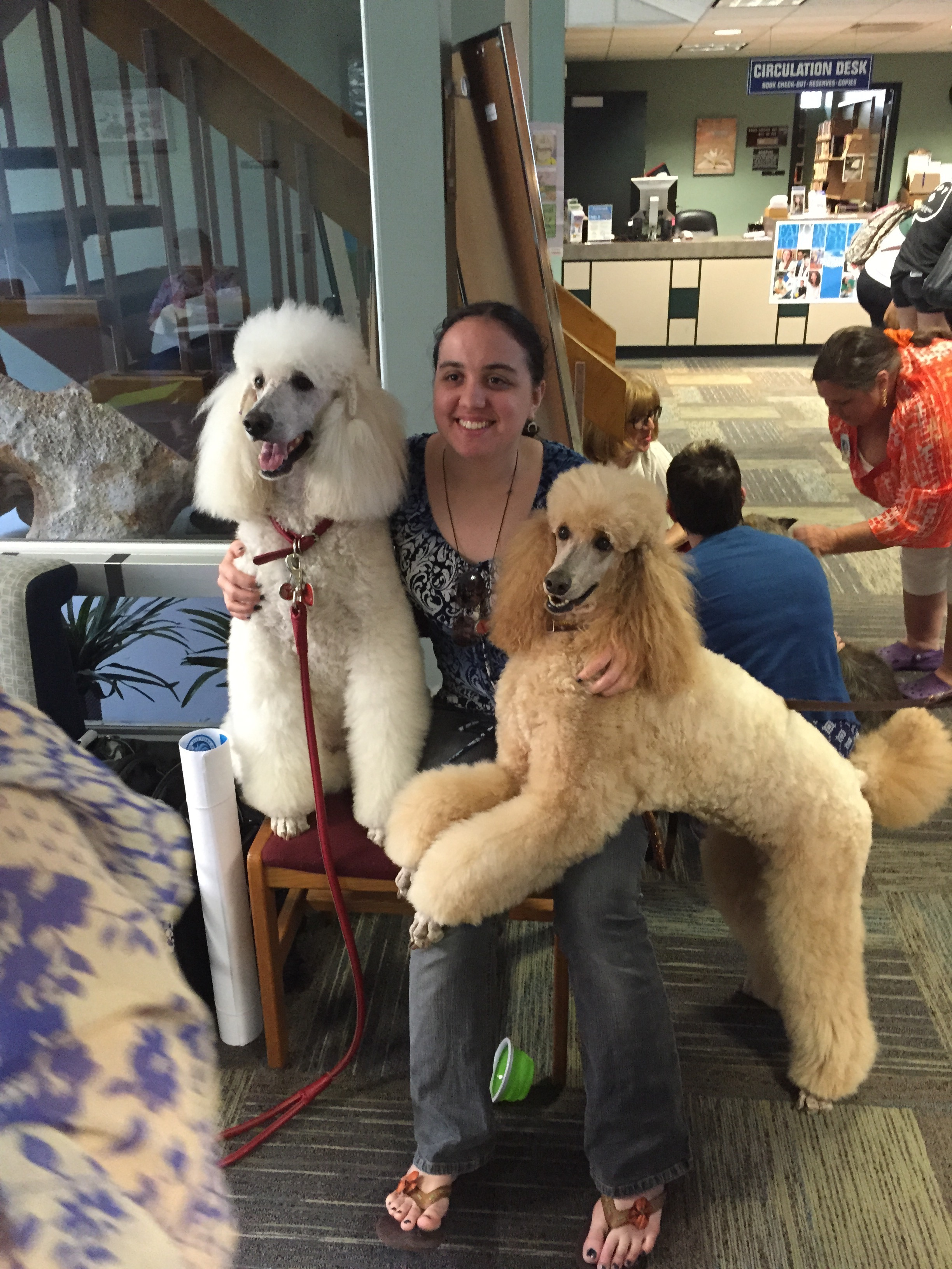 student with therapy dogs