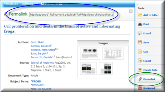 screenshot of EBSCO article citation with Permalink