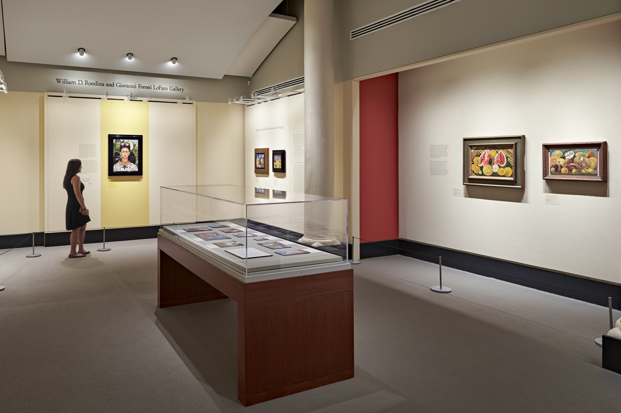 Paintings by Frida Kahlo on display