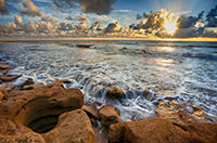 Washington Oaks Sunrise by Will Dickey