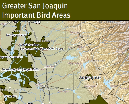 Greater San Joaquin Important Bird Areas